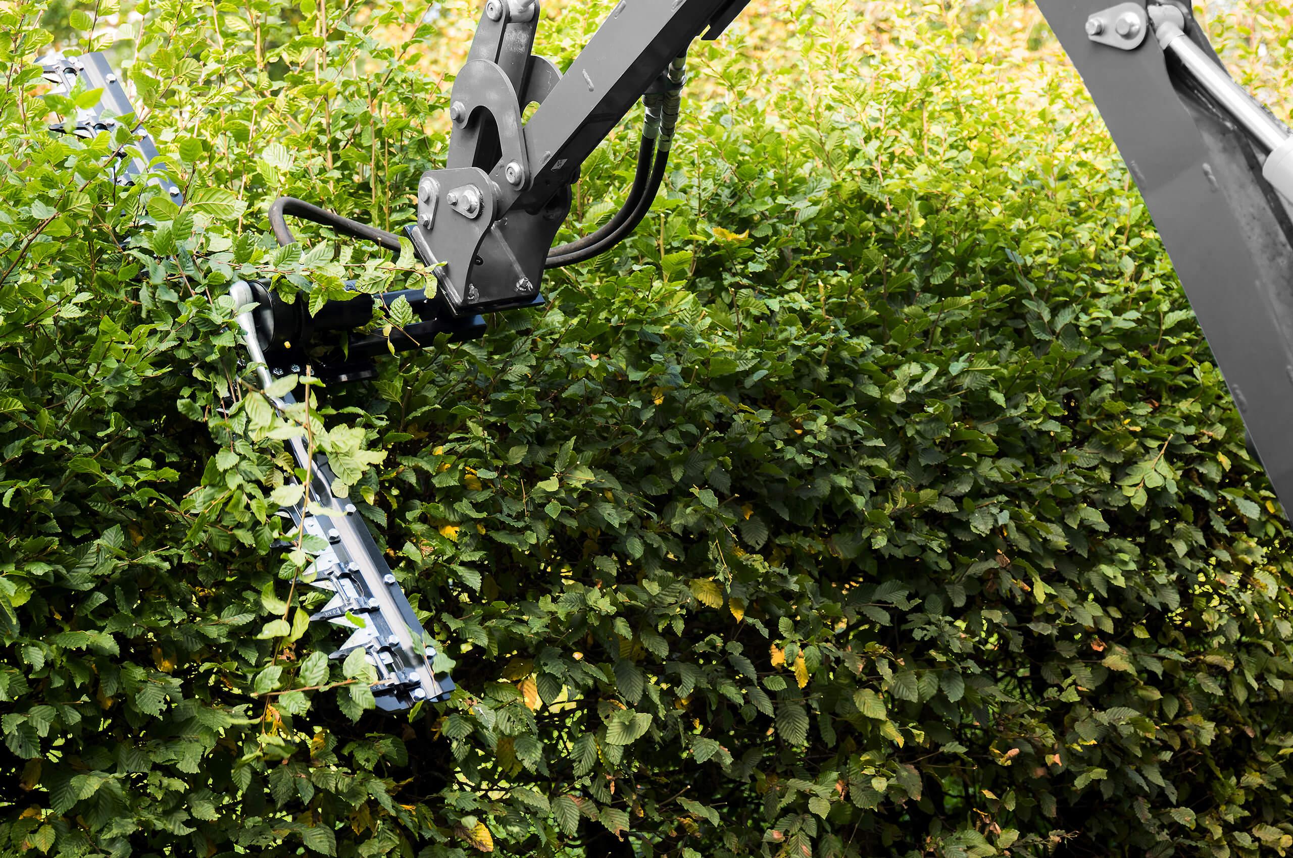 Group Schumacher hedge trimmer
