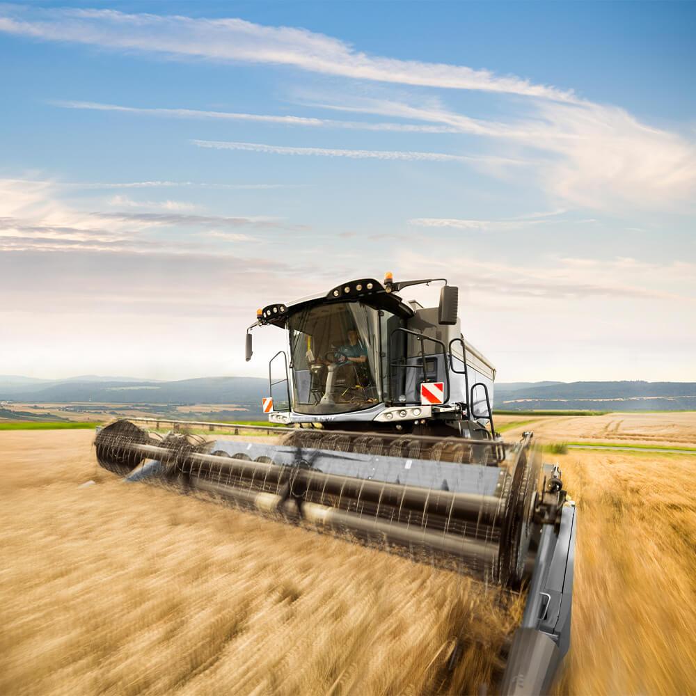 Combine harvester mows grain