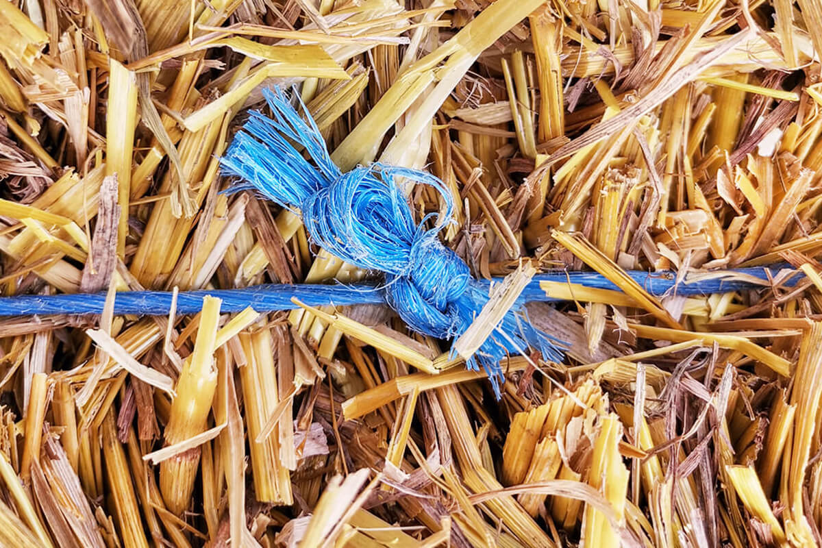 a blue knot on a field